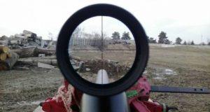 pristrelka-pnevmata